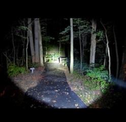 DieHard Flashlight 6AA