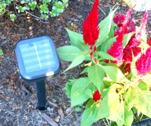 Solar Lights from Outdoor Solar Store