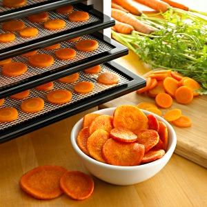 carrot chips  http://twoclassychics.com/2014/06/5-healthy-veggie-chip-recipes/