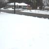 snow yard