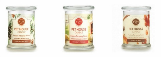 Pet House Candles Holiday Scents