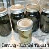 Zucchini Pickles Recipe