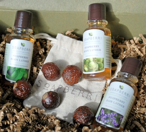 Natural Cleansing with the Soapberry Experience Set – Tree to Tub