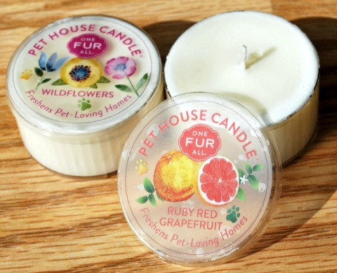 One Fur All Pet House Candles Bring Spring Indoors