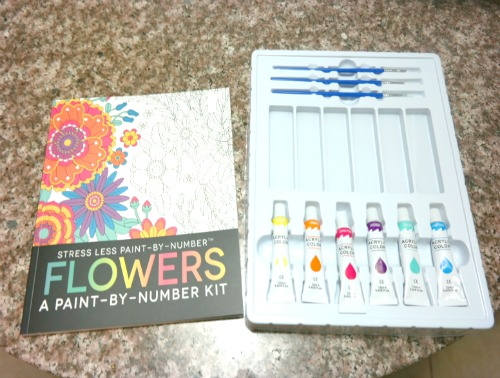 Stress Less Paint-By-Number Flowers Kit