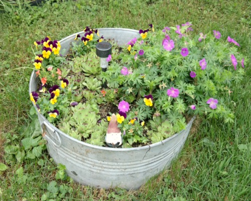 Gardening: Old Metal Wash Basin Garden Planter