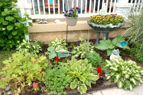 Flowerbed and Garden #1