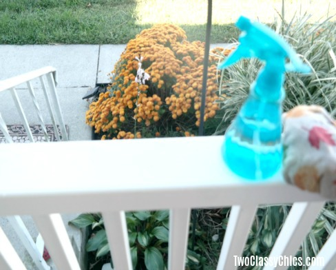 Best Homemade Outdoor Furniture and Deck Cleaner
