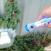 Life+Gear Mini Glow Flashlight