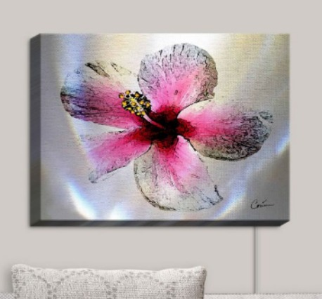 Dianoche Designs Illuminated Wall Art
