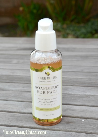 Soapberry for Face from Tree to Tub