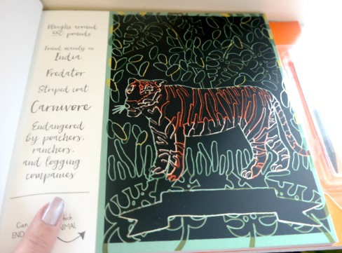 Scratch & Create: Amazing Endangered Animals Book